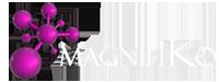 MagnifiKo Web Agency